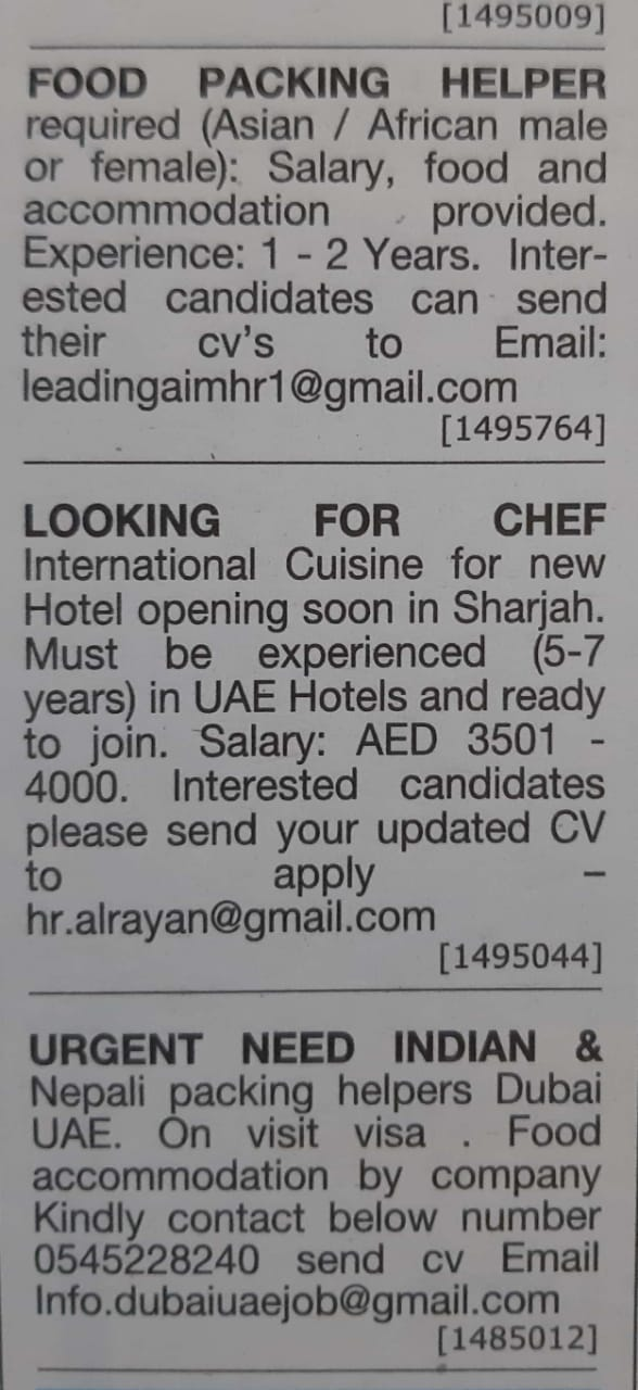 Piping designer salary in kuwait
